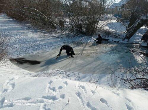 На Львівщині втопилась жінка